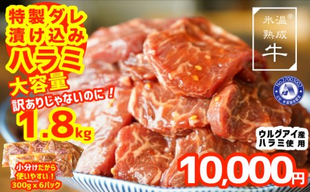 010B722 氷温(R)熟成牛 特製ダレ漬込みハラミ 訳ありじゃないのに1.8kg(300g×6)大容量 小分け便利