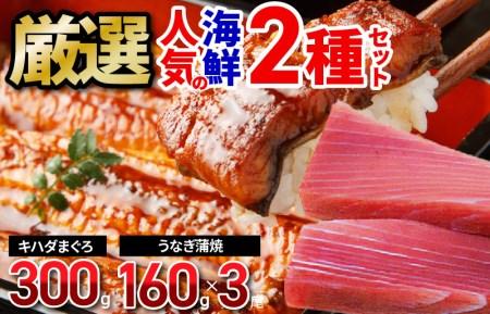 厳選!人気の海鮮 2種セット(キハダまぐろ赤身ブロック、国産うなぎ蒲焼)