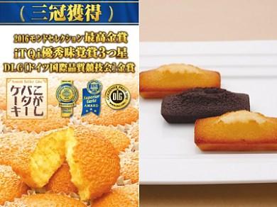 B073 フィナンシェ16個入&こがしバターケーキ15個入(専用箱)