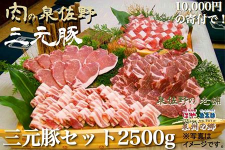 B085 三元豚セット2500g