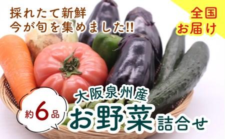 泉州産 季節の 野菜 詰め合わせ セット 0011