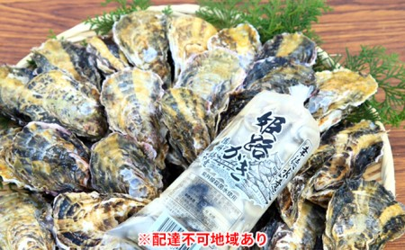 【姫路産特選】牡蠣セット(殻付き約2.5kg+大粒剥き身約500g)