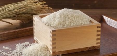 CZ04◇淡路島のお米 こしひかり(5kg)