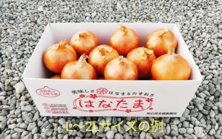 CY68◇淡路島玉葱 オリジナルブランド「はなたま」(中生~晩生) 5kg