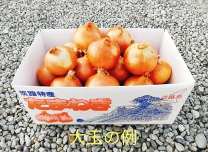 CY70◇淡路島玉葱の大玉 10kg