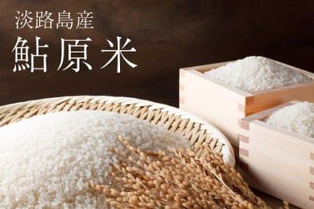 FF13◇鮎原米 10kg【淡路島のブランド米】