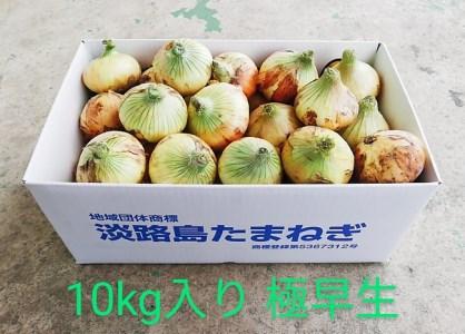 CY92:淡路島産 玉葱 10kg 中生