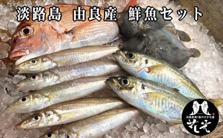 B001*由良漁港の鮮魚セット