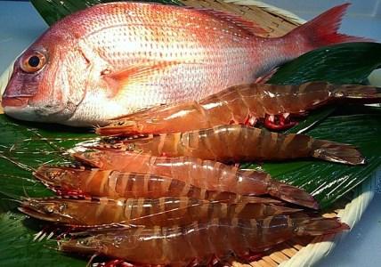 A057*淡路島産天然真鯛と足赤エビのセット