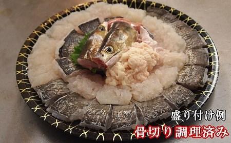 B018*淡路・由良産黄金ハモの鍋セット