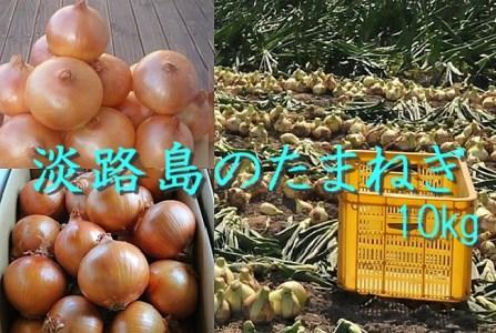 H023*淡路島産 中晩生たまねぎ10kg(1回発送)