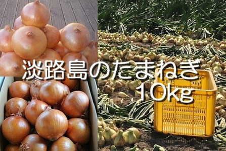 H032◇淡路島産 中晩生たまねぎ10kg(1回発送)