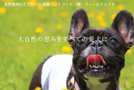 A-267 犬のおやつ 6点セット