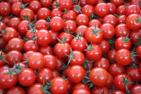 A-235 愛情たっぷり育てられた極糖トマト