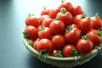 A-20 フルーツトマト「甘えん坊の赤オニくん6P」詰合  「3,000P」