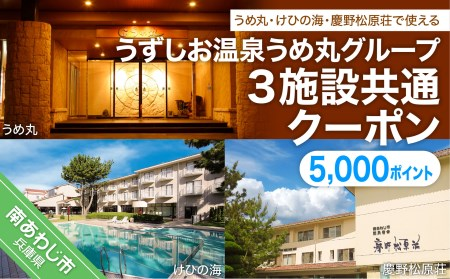 AT10SM-C うずしお温泉うめ丸グループ【3施設共通クーポン】5000P