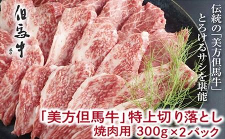 【美方但馬牛】特上切り落し300g×2パック(焼肉用)