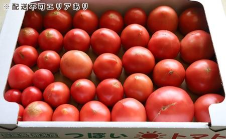 坪井農園 こだわりトマト【訳あり】3.5kg