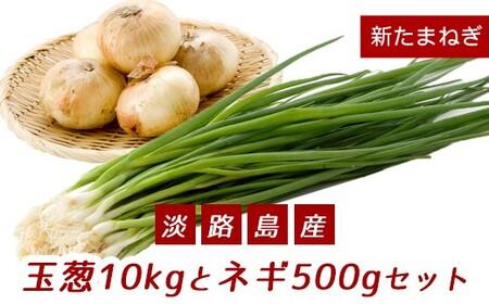 ak09002 【新たまねぎ】こうめいさんの玉葱10kgとネギ500gセット