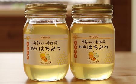 【五つ星ひょうご認定商品】有美ちゃんの養蜂場の純粋はちみつ 600g 2個セット