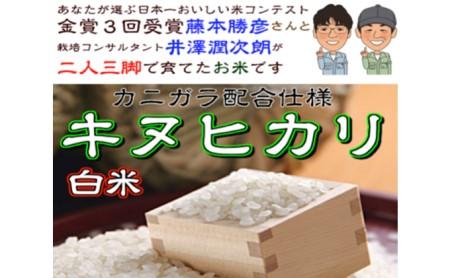 [№5753-1096]稲美金賞農家 藤本勝彦さんのキヌヒカリ白米約4.5kg