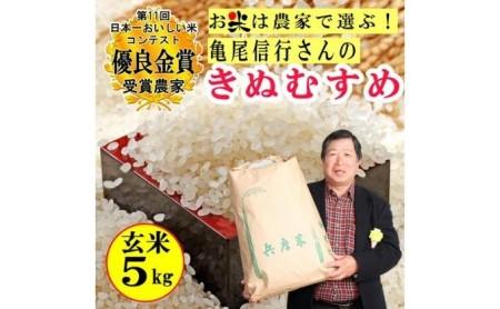 [№5753-1131]稲美金賞農家 亀尾信行さんのきぬむすめ玄米5㎏