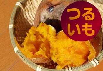 010GE01L.つるい元気農園 芋ほり体験