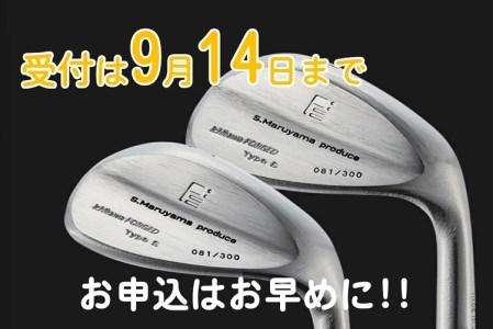 200HB01L.丸山茂樹プロデュース いちかわアイアンプレミアムシリーズ【Type S】ウェッジ2本組(AW、SW)