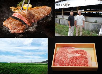 KBS-03 城谷牧場の神戸ビーフ(神戸牛)ステーキ用360g