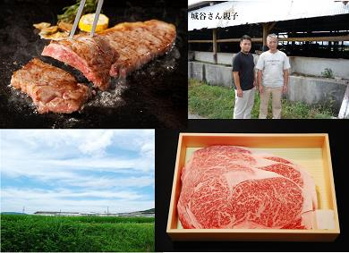 KBS-06城谷牧場の神戸ビーフ(神戸牛)ステーキ用450g
