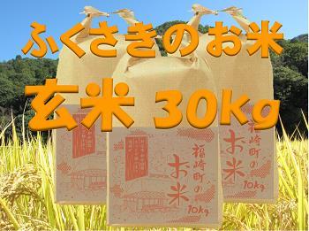 B011 福崎町のお米30kg(玄米)