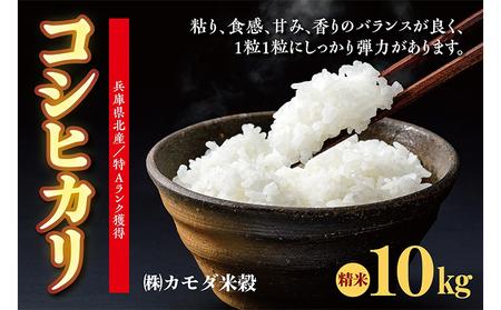 兵庫県北産 こしひかり10kg