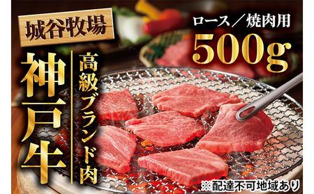 城谷牧場の神戸牛 ロース焼肉用500g