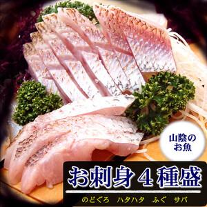 山陰のお刺身用魚4点詰合せセット(生サバ、ノドグロ、ハタハタ、フグの4種) 【1237472】
