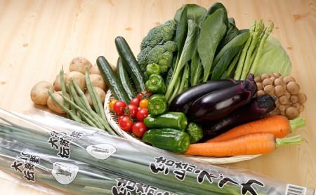 季節の地元野菜詰め合わせセット