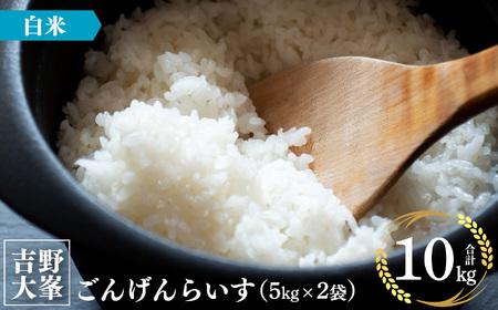 【2902-B20】吉野大峯ごんげんらいす5㎏×2袋(水本米穀店》