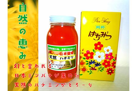 【A-008】日本蜜蜂ハチミツ(450g)《吉野ハニー》