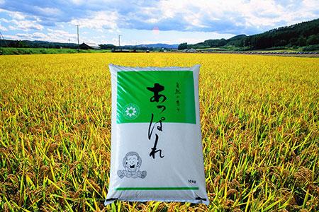 A010-18:今井農場あっぱれ米10kg (精米)