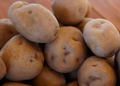 A010-32:津別町産特別栽培馬鈴薯20kg