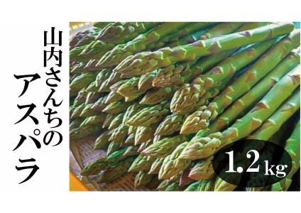 【A010-3】山内さんちのアスパラガス1.2kg