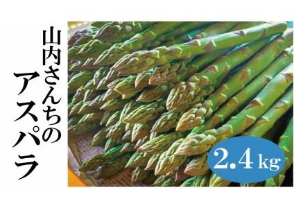 【B020-1】山内さんちのアスパラガス2.4kg