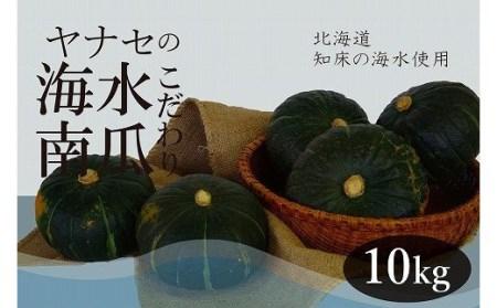 【A010-6】~知床海水ミネラル栽培~ 柳瀬産商 こふき南瓜10kg