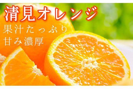 清見オレンジ5kg  和歌山県より農園直送! まごころ産直みかん