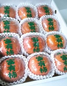 ケーズファーム最高級 冷蔵富有柿