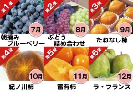 フルーツ定期便 はしもと旬果(7月~12月の6ヵ月間・6回のお届け)【数量限定】