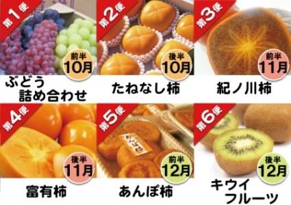 フルーツ定期便 秋のはしもと旬果(10月~12月の3ヵ月・6回のお届け)【数量限定】