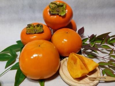匠果樹園 富有柿 約3.5kg L~2Lサイズ 約12個