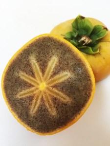 あさみ農園の紀の川柿(12~16個、2L~3Lサイズ)