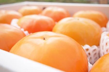 ケーズファーム最高級 富有柿(12個、赤秀2Lサイズ)