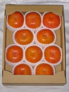 高野山麓園 秋の味覚の王様!富有柿(9~10個、2~3L)